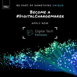 "Towards entry ""Digital Tech Fellows Program"""
